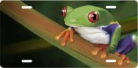 Frog on Branch Airbrush License Plate