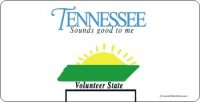 Design It Yourself Custom Tennessee State Look-Alike Plate #3