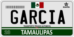 Mexico Tamaulipas Photo License Plate