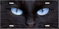 Cat Eyes (Blue) Airbrush License Plate