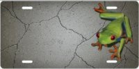Frog on Concrete Airbrush License Plate
