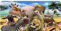 African Animals Selfie Photo License Plate