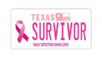 Texas Breast Cancer Survivor Photo License Plate