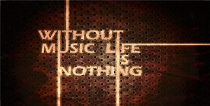 Without Music Life Is Nothing Photo License Plate