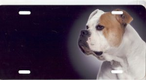 American Bulldog Airbrush License Plate