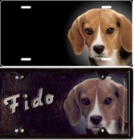 Beagle Airbrush License Plate