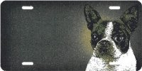 Boston Terrier Airbrush License Plate