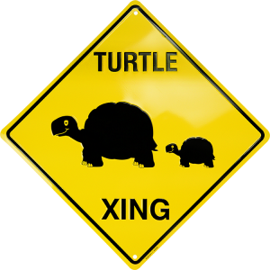 Turtle Xing Metal Parking Sign