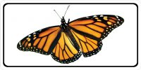Monarch Butterfly Full Photo License Plate