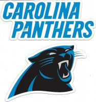 Carolina Panthers 2pc Team Magnet Set
