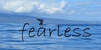 Fearless Whale Ocean Scene Photo License Plate