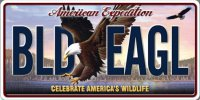 American Expedition BLD EAGL Photo License Plate