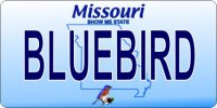 Design It Yourself Missouri State Look-Alike Bicycle Plate #3