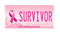 Arizona Breast Cancer Survivor Photo License Plate