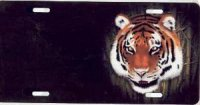Bengal Tiger Offset License Plate