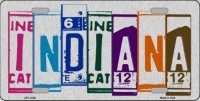 Indiana Cut Style Metal License Plate