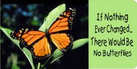 If Nothing Ever Changed Butterfly Photo License Plate