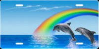 Blue Rainbow Dolphins Airbrush License Plate