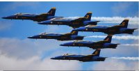 Blue Angels In Formation Photo License Plate
