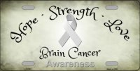 Brain Cancer Ribbon Metal License Plate