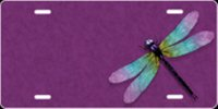 Dragonfly Airbrush License Plate