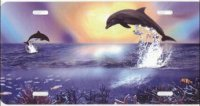 Dolphins Jumping Airbrush License Plate