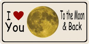 Love You To The Moon And Back Photo License Plate