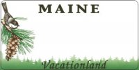 Design It Yourself Maine State Look-Alike Bicycle Plate #2