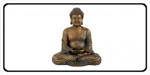 Buddha Photo License Plate