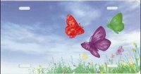 Butterflies Offset in Field Airbrush License Plate
