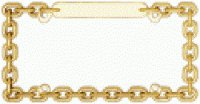Chain Link Gold Metal License Plate Frame