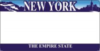 Design It Yourself Custom New York State Look-Alike Plate #3