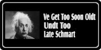 Albert Einstein Oldt … Shmart Photo License Plate
