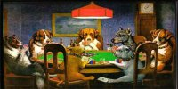 Dogs Playing Poker License Plate