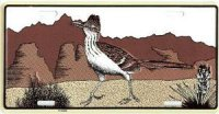 Brown Roadrunner License Plate