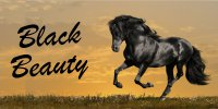 Black Beauty Horse Photo License Plate
