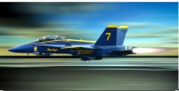 Blue Angels Jet In Flight Photo License Plate