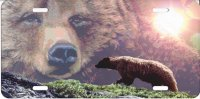 Grizzley Bear Mountain Scene Airbrush License Plate