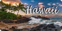 Hawaii Shoreline Scene Photo License Plate