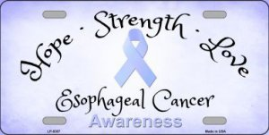 Esophageal Cancer Ribbon Metal License Plate