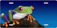 Frog on Blue Airbrush License Plate