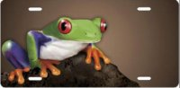 Frog on Mocha Airbrush License Plate