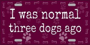 I Was Normal Three Dogs Ago Metal License Plate