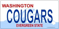Design It Yourself Custom Washington State Look-Alike Plate #3