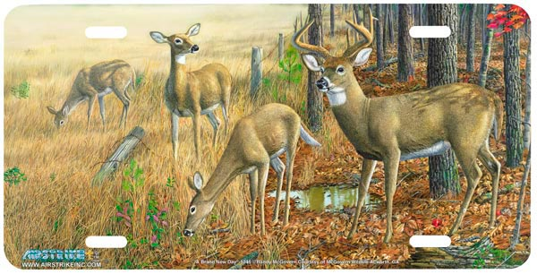 AS5246 A Brand NEW Day Deer License Plate  Free Personalization on this Air Brush