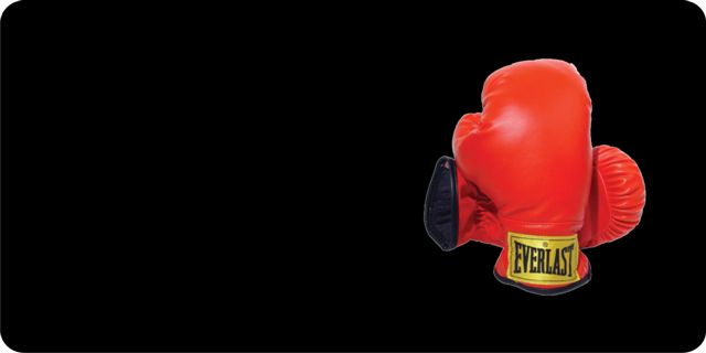 Boxing GLOVES Offset On Black Photo License Plate Free Personalization on this plate