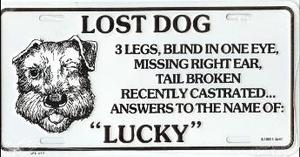 Lost Dog Lucky License Plate Lps547 10 99